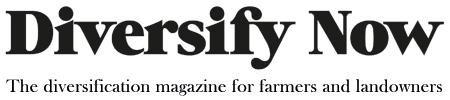 Diversify Now Magazine